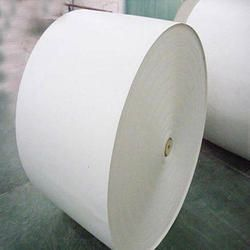 Poly Light Weight Coated Paper (LWC Paper)