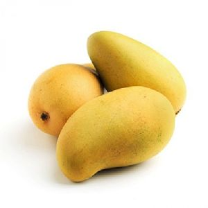 Kesar Mango 01