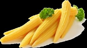 Baby Corn fresh peeled