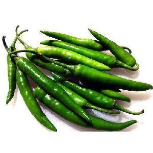 Organic Green Chili