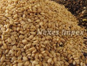 Golden Sesame Seeds