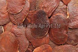 Butea Monosperma Seeds