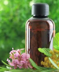 Herbal Geranium Oil