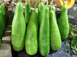 Fresh Bottle Gourd