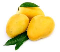 Fresh Alphonsa Mango