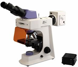 Led Fluorescence Microscope