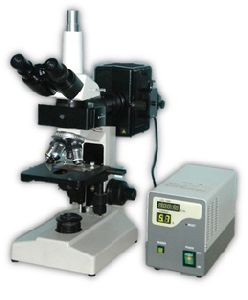 Trinocular Research Fluorescence Microscope