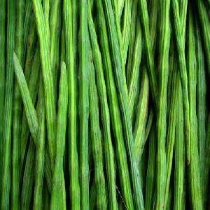 Organic Drumstick