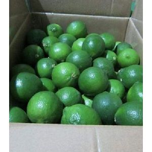 Organic Green Lemon