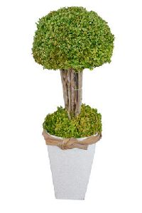 Artificial Green Bonsai Plant