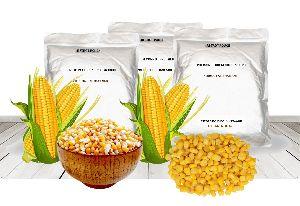 Corn kernel in brine