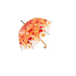Printed Umbrella 02