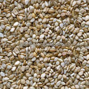 Natural Sesbania Seeds