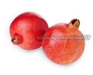 Ganesh Pomegranate