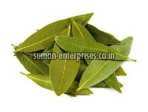 Indian Bay Leaf
