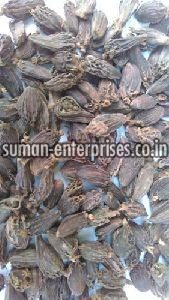 Organic Black Cardamom