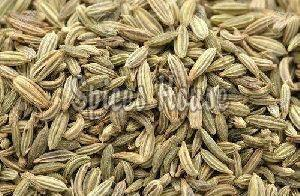 Raw Fennel Seeds