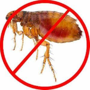 Fleas control