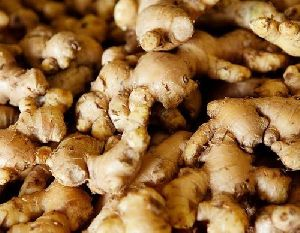 Fresh Brown Ginger