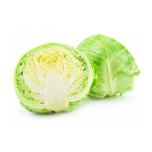 Fresh Organic Cabbage