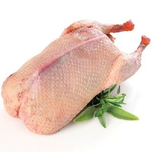 Whole Duck Meat