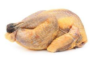 Guinea Fowl Meat