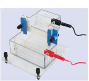 Vertical Electrophoresis System