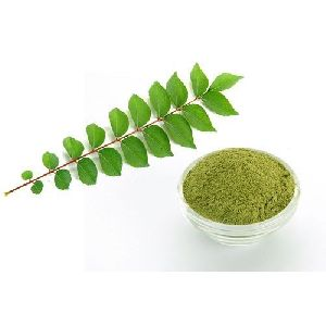 Dried Curry Leaves Powder