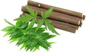 Neem Chew Sticks