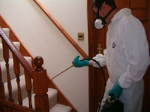 Anti Termite Treatment Service