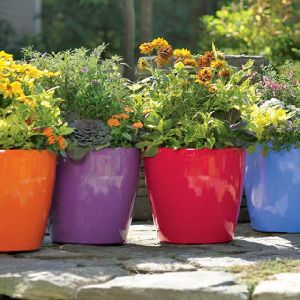 Outdoor Colored Flower Pots