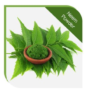 NEEM POWDER : HAIR TREATMENT POWDER