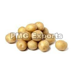 Fresh Small Potato