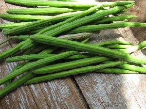 Green Drumstick
