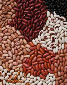 Natural Kidney Beans
