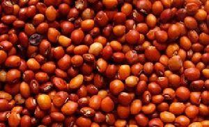 Organic Red Gram