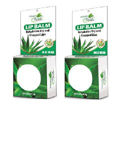 Nature's Sparsh Lip Balm with Aloe Vera