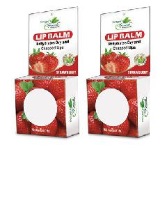 Nature's Sparsh Lip Balm with Strawberry