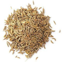Pure Cumin Seeds