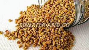 Dried Fenugreek Seeds