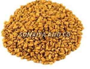 Raw Fenugreek Seeds