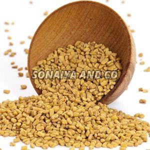 Yellow Fenugreek Seeds