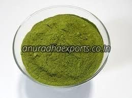 Dry Moringa Leaves Powder
