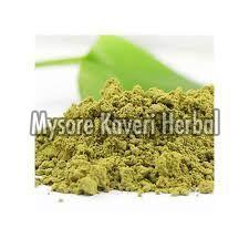 Basil Leaves Powder