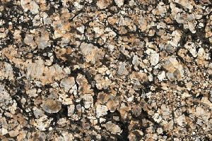 Pegasus Brown Granite Slab