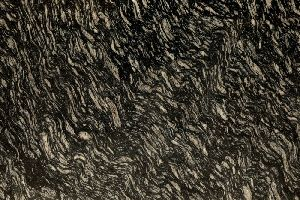 Zebra Black Granite Slab