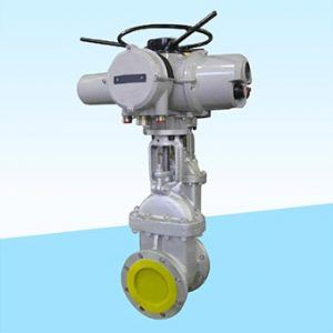 Electrically Operated Gate Valve