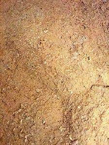 Wood Sawdust Powder