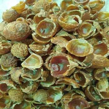 Deseeded Soap Nuts