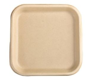 9 Inch Biodegradables Disposable Plate